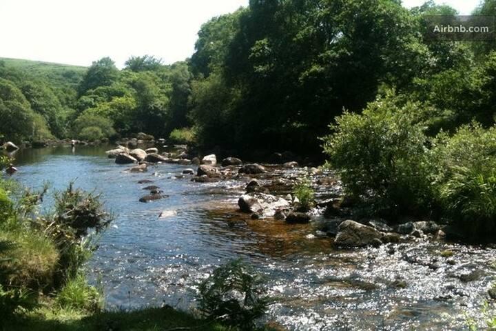 The river Dart runs through the town and onto Dartmoor