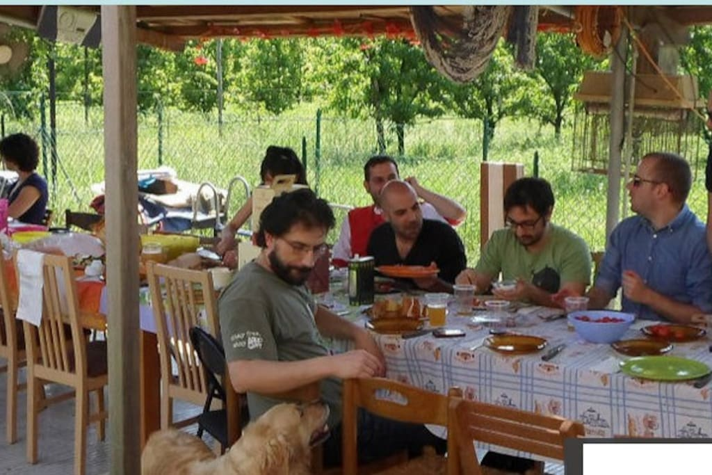 Posto tenda per concerto tents for rent in reggio emilia - Posto letto reggio emilia ...