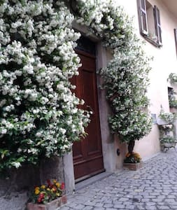 Il gelsomino di Isia - Orvieto