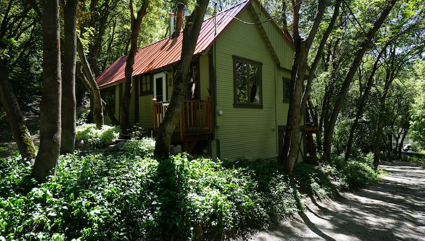 Little Cottonwood Canyon Cabin - Salt Lake City - Blockhütte