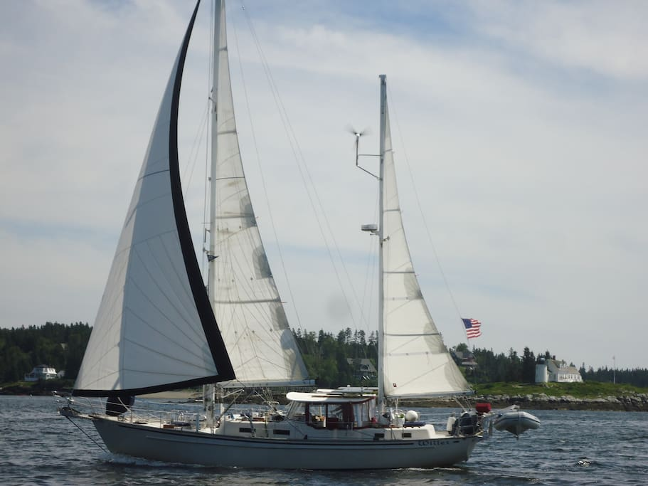 Willet Sailing in Eggemoggin Reach, Maine 2013