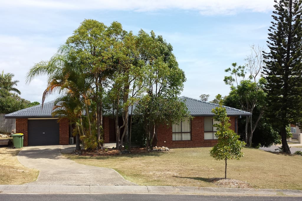 A corner property with tall Norfolk Pine, Mango and Jacaranda trees, Gold Coast, Australia
