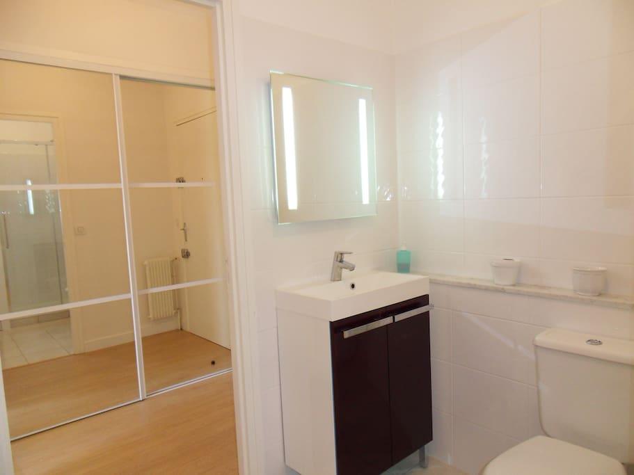 Salle de bain et vue partielle de la porte du placard d'entrée (miroir)