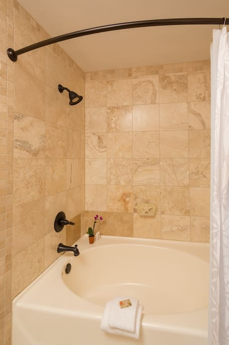 Shower and large soaking tub.