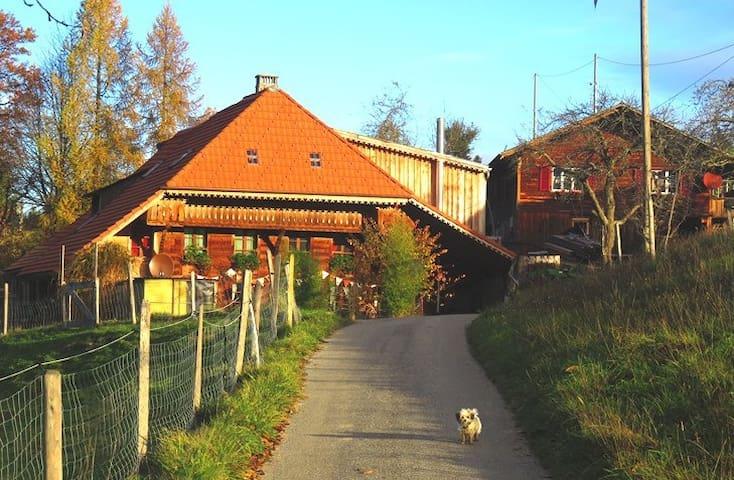 Ferienwohnung Tierhof Mühleweg - Walterswil - Apartamento