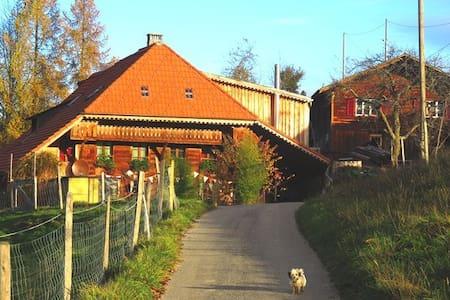Ferienwohnung Tierhof Mühleweg - Walterswil - Apartment