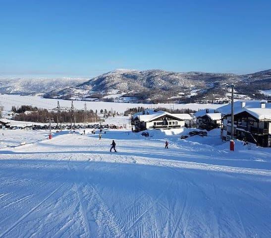 Ski INN/UT på Norefri/Norefjell
