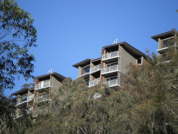Westhaven at Binna Burra - One Bedroom Studio
