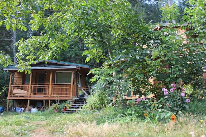 Dandy Lion's Den Guesthouse