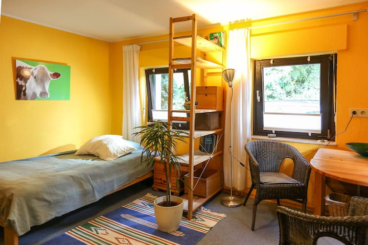 Nice room near forest and Rhine river - Bona - Casa