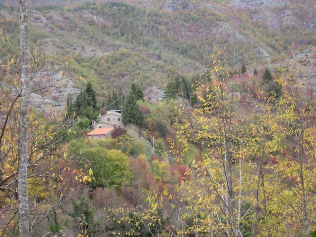 Montaonda: sole pietra e bosco