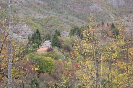 Montaonda: sole pietra e bosco - San Godenzo - Hus