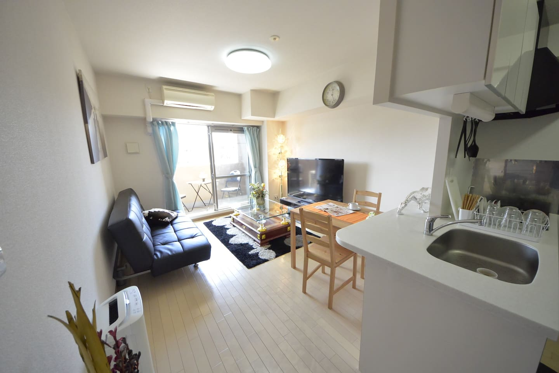 Livingroom with SD sofabed(120cmx200cm)。客厅有双人沙发床