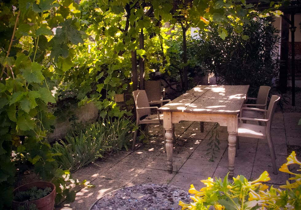 Relax under grape vines while listening to the nearby stream in our garden