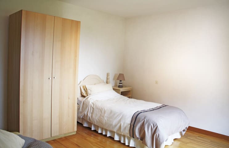 Ideal place to work, visit Geneva - Sauverny - Bed & Breakfast