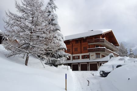 Champ d'Hermines Ski In&Out - Gryon - Appartement