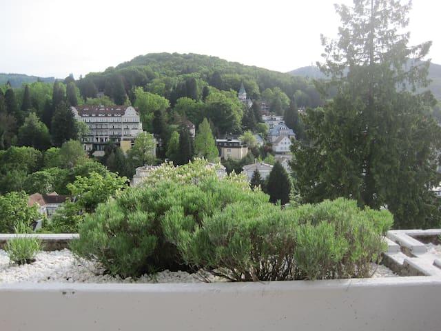 Panoramablick nahe Festspielhaus - Baden-Baden - Leilighet