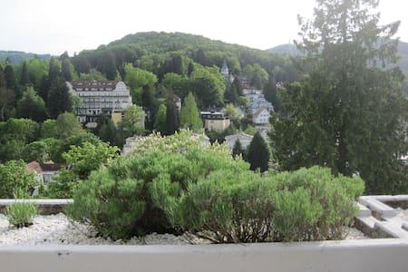 Panoramablick nahe Festspielhaus - บาเดน-บาเดน - อพาร์ทเมนท์