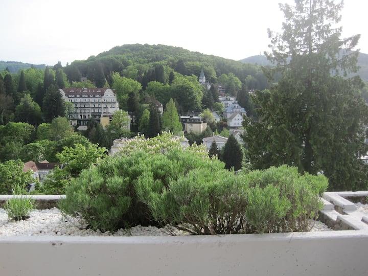 Panoramablick nahe Festspielhaus