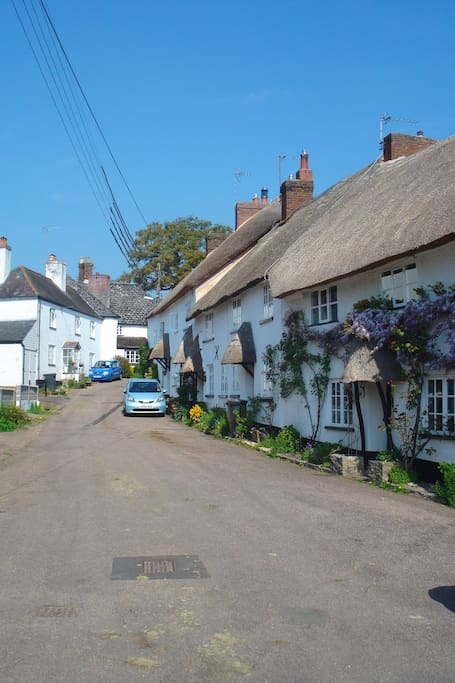 Quaint thatched lanes in Sidbury.