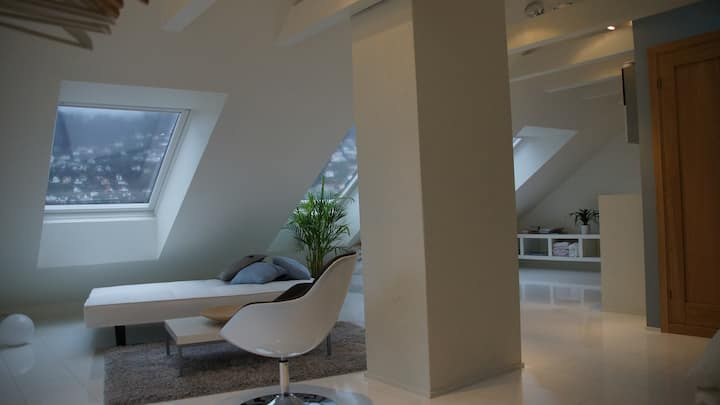 Modern attic apartment