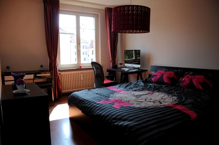Lovely & Cozy Home close to Zurich - Winterthur - Apartmen