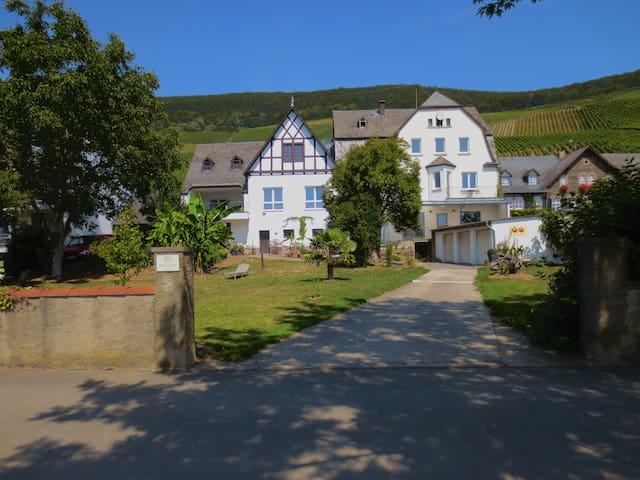 Apartment  MOSELGARTEN  Im Weingut 3 - Piesport - Daire