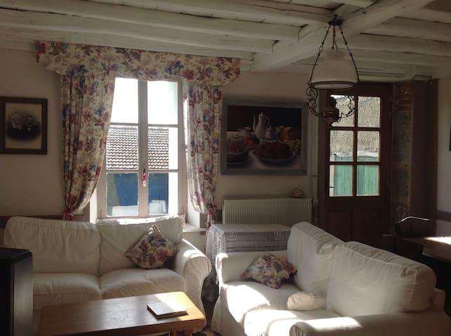 Maison de charme - Saint-Bonnet-des-Quarts - Hus