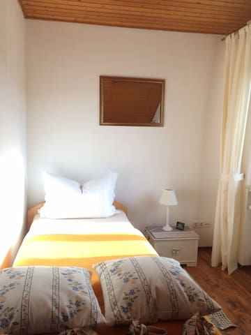 Zimmer im Weingut - Bad Dürkheim - House