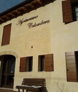 stanza nuovissima vicino a venezia - quarto d'altino  - Bed & Breakfast