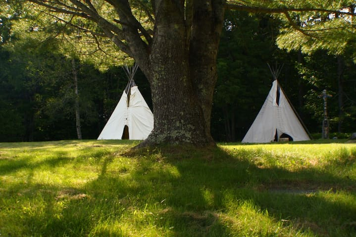 Magnificent Tipi in the Woods - Montville - Tipi