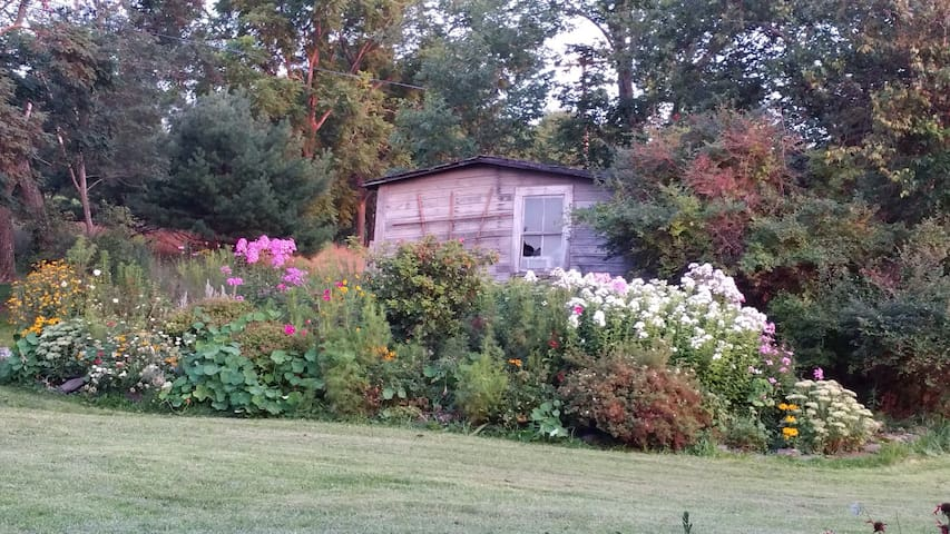 Summer garden!
