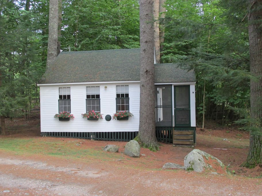 Cottage 5 is nestled in the woods, first cabin as you enter the 1 1/2 acre property.