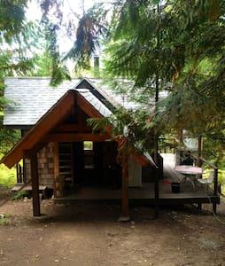 Kootenay Country Cabin - Nelson - Blockhütte
