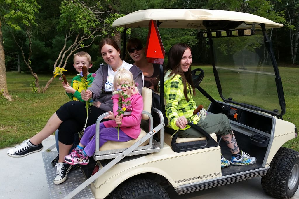 Clam river haven on the clam river marion mich for Narrow golf cart