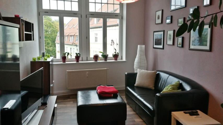 Bright Room in the Centre of Erfurt - Erfurt - 公寓