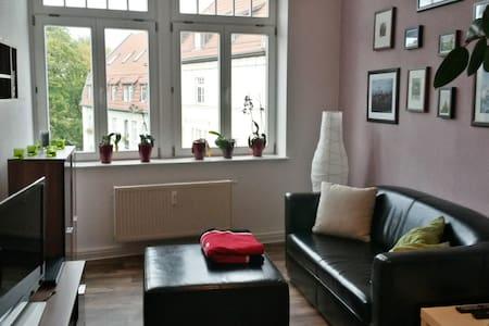Bright Room in the Centre of Erfurt - Erfurt