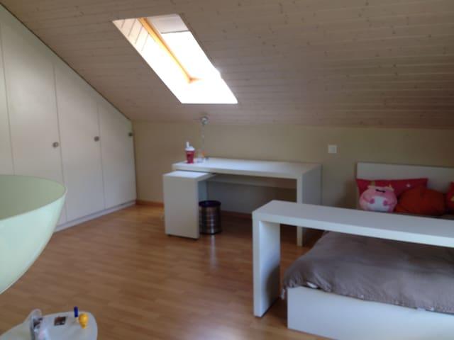 chambre dans une maison confortable - Blonay - House