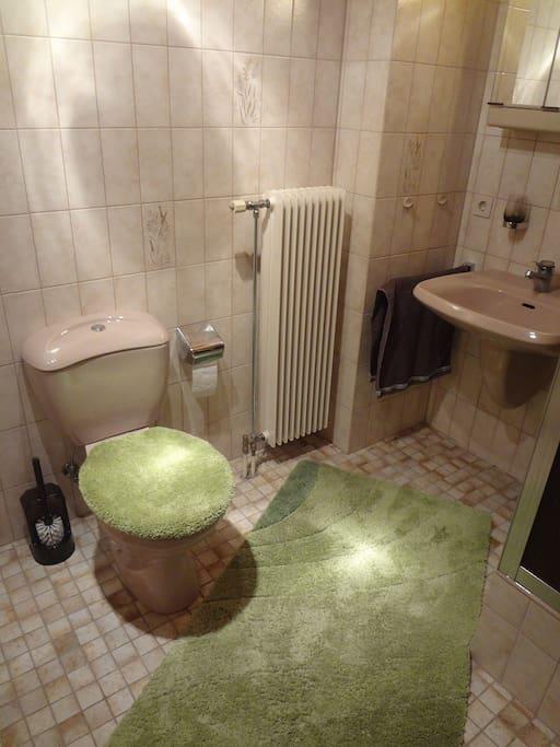 Das eigene Badezimmer für Gäste mit Dusche und WC