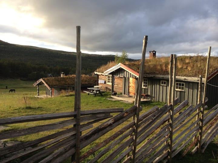Seter i Alvdal Vestfjell