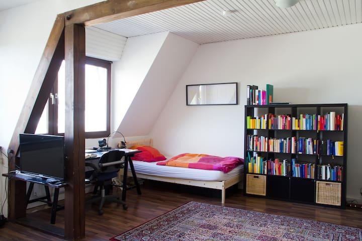 Great Room In The South Of Cologne - Køln - Leilighet