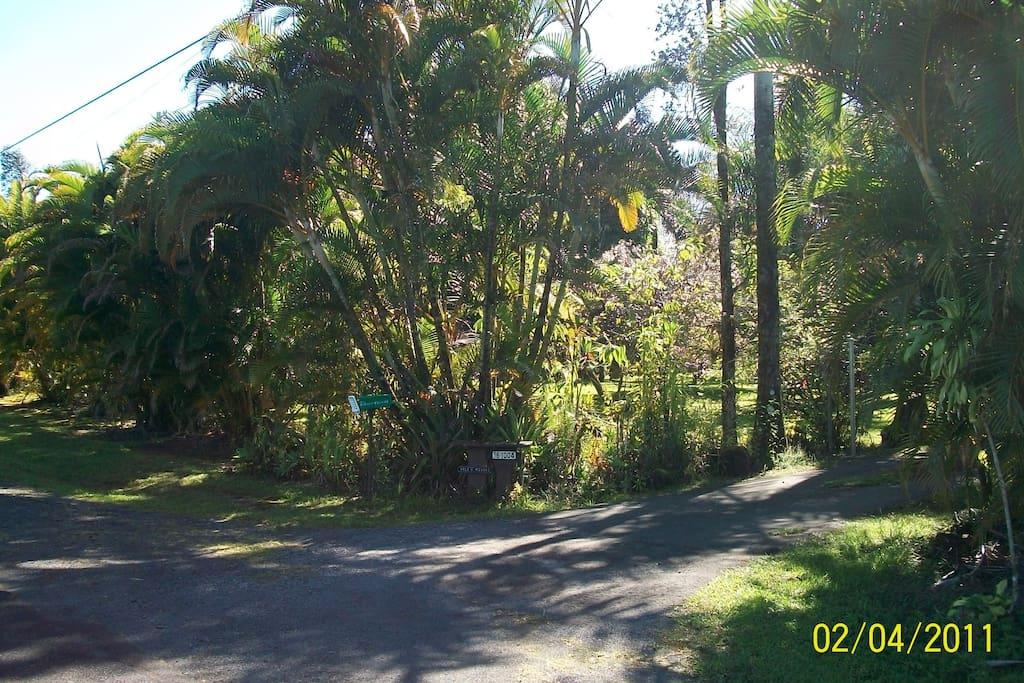 RV Parking on Kilauea, Big Island