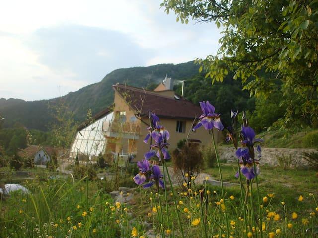 Simon's House - Săcărâmb - Villa