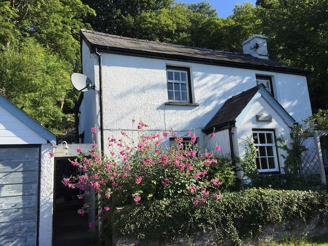 'Quarry mans cottage'     Pentwyn Mawr - Bwlch - Bed & Breakfast