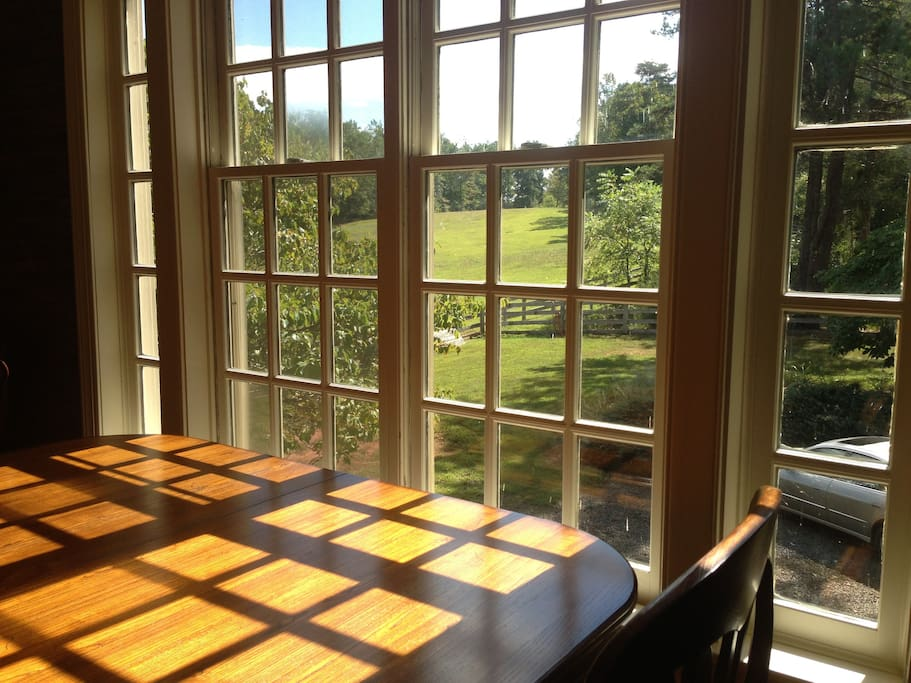 Wonderful views from the dining table. Light-filled room.