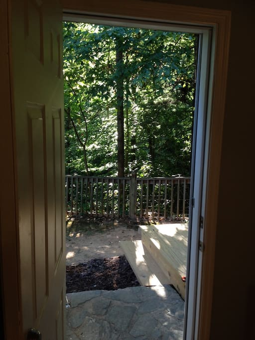 View of rhododendron and hardwood forest from apartment door.