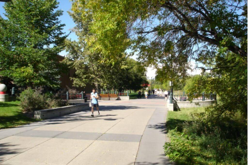 Riverside pathway