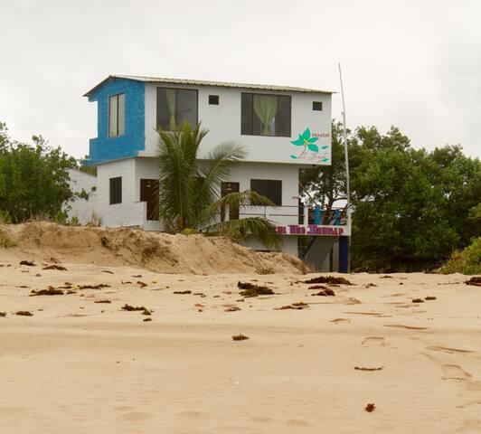 Hostal La Jungla, a 10 metros de la playa.