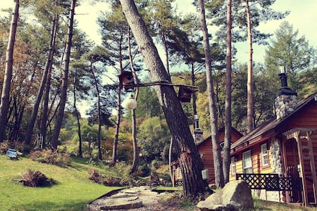 Music Forest - Cottage
