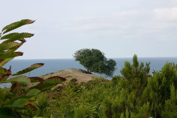 Kantur. Haus am schwarzen Meer - Çalköy Köyü - Casa